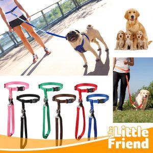 leash running tali tuntun anjing di pinggang 1