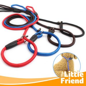 leash cesar milan 1